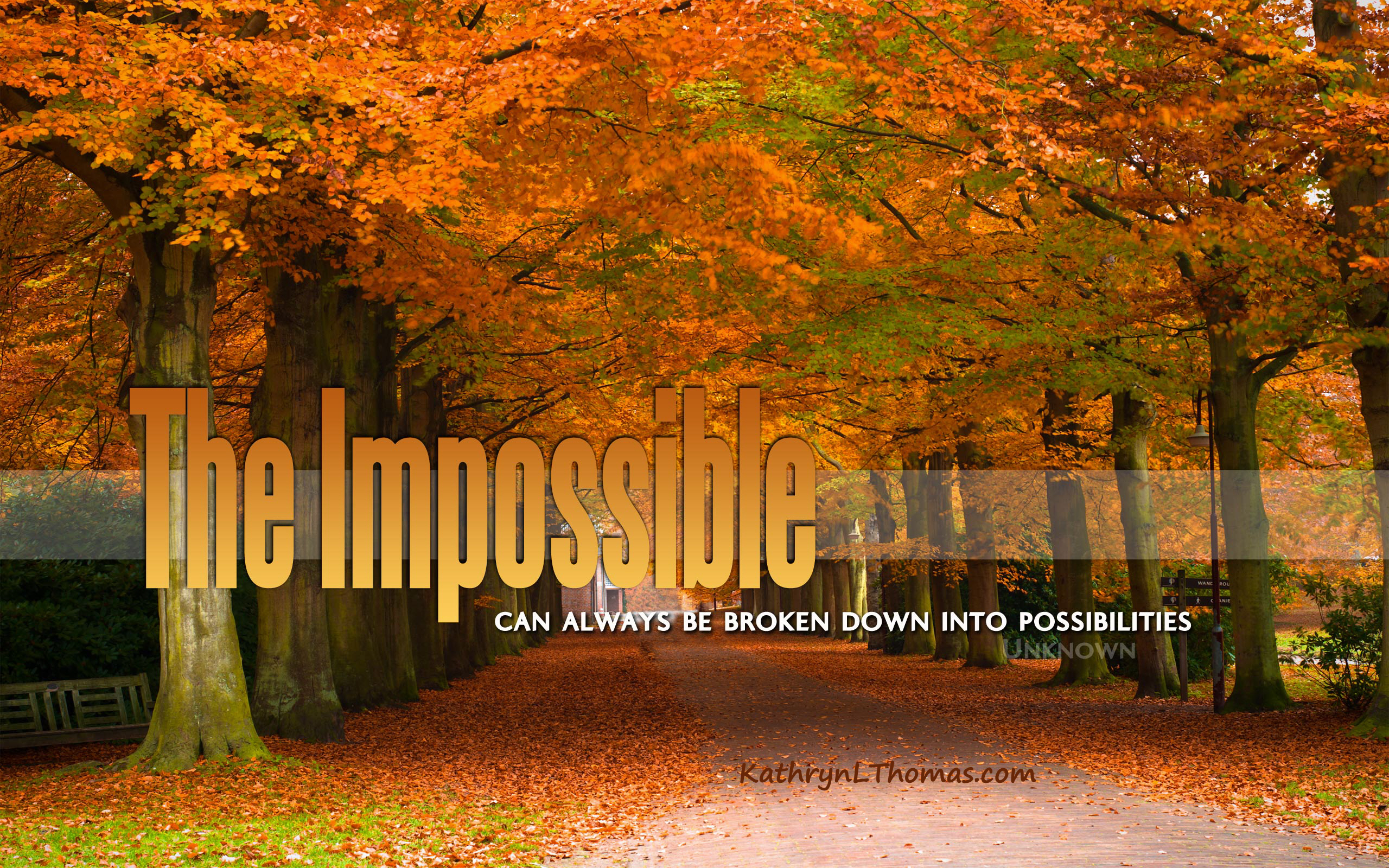 Quote about achieving the impossible