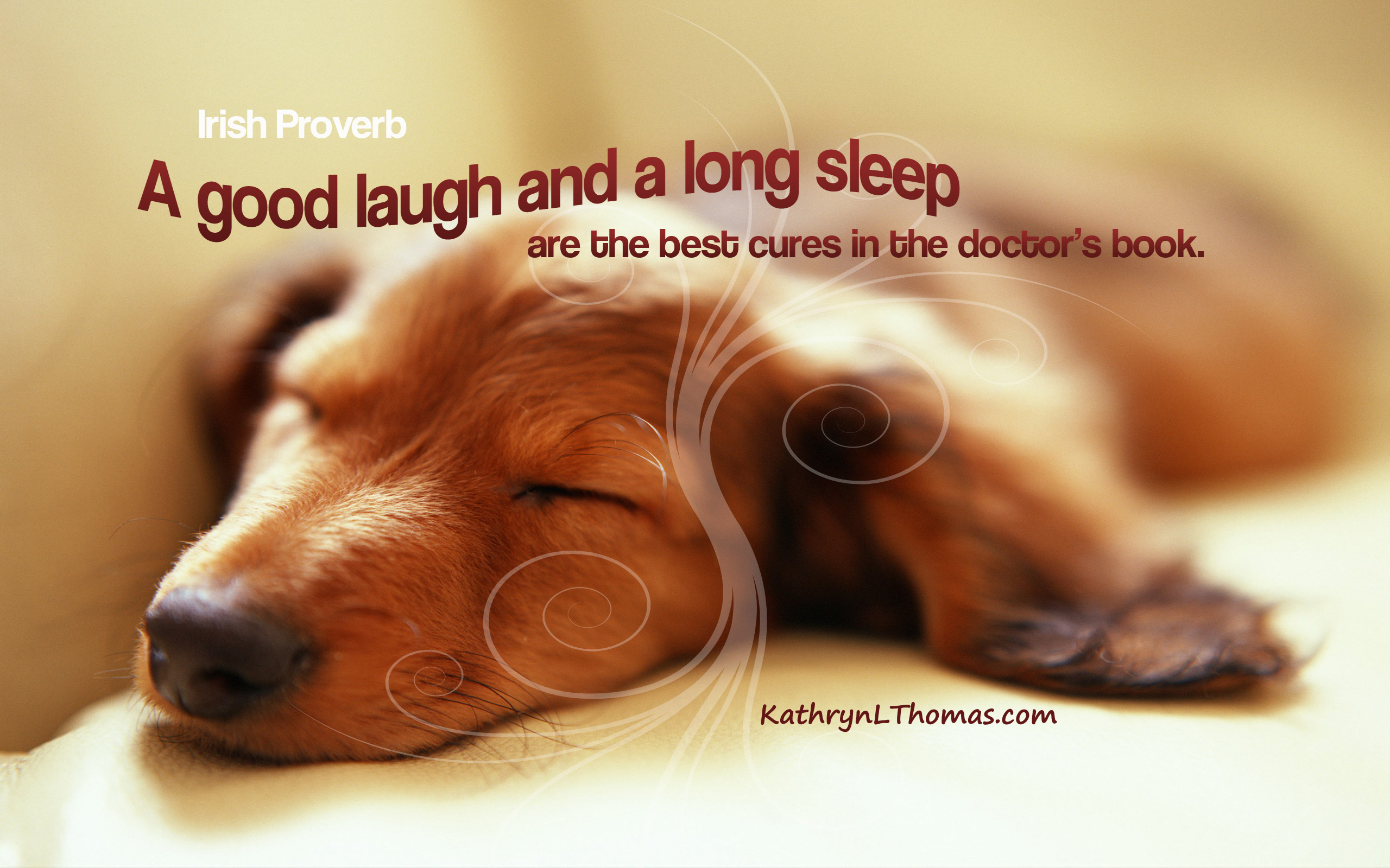 Irish Proverb about a good laugh